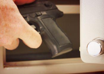 Best_gun_safe_door_organizer_outdoor_life