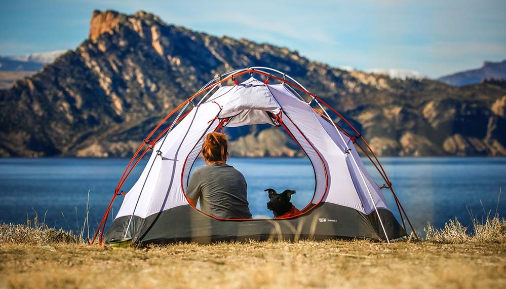 woman and her dog inside a tent on the lakefront